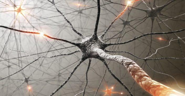 نورولوژی و نوروپاتی - صبامد