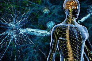 اختلالات دستگاه عصبی خودکار