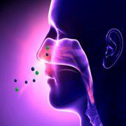 علل ایجاد اختلالات بویایی